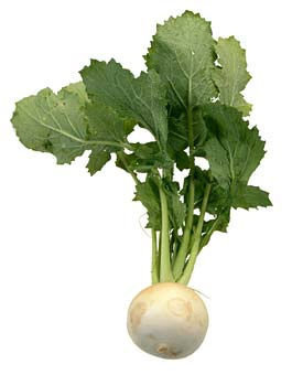 Compro Legumes e verduras