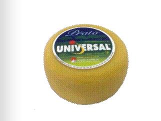 Compro Queijo Universal Prato