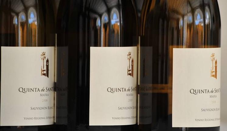 Compro Sauvignon Blanc 2010 Quinta de Sant'Ana