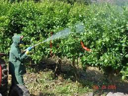 Comprar Fungicidas