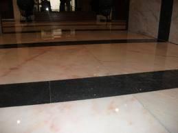 Comprar Pavimentos de marmore