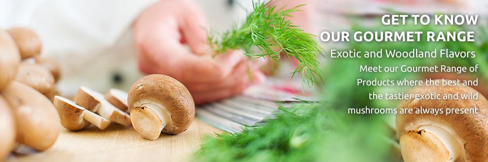 Compro Azeite aromatizado com cogumelos Porcini