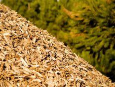 Compro Biomassa