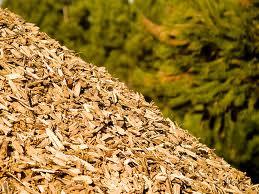 Compro Biomassa florestal