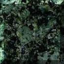 Compro Verde Fontein