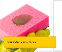 Detergencia domestica
