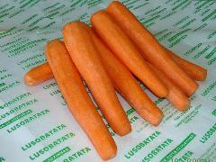 Cenoura inteira