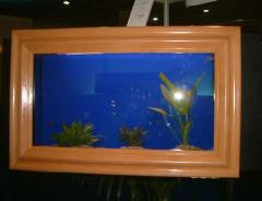 Aquarios quadro