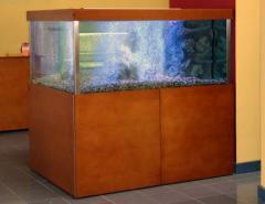 Aquarios para marisco
