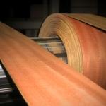 Orlas de folha de madeira