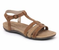 Sandal musk