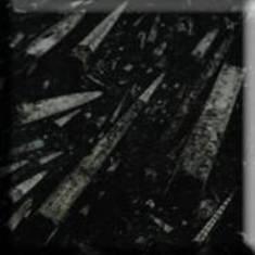 Bloco de pedra(marmore) fossil