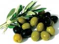 O azeite pode conter apenas uma variedade de azeitona.