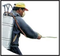 Encomenda Tratamento de madeiras (desinfectação)