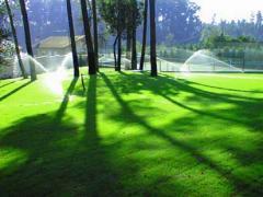 Relvados, manutenção jardins e espaços verdes