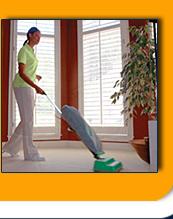 Limpeza casas particulares
