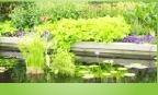 Construção, tratamento e manutenção de jardins