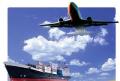 Exportação e Importação de Produtos Alimentares e Artes Gráficas